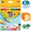 COLOUR PENCIL BIC EVO TRI PK12 829735